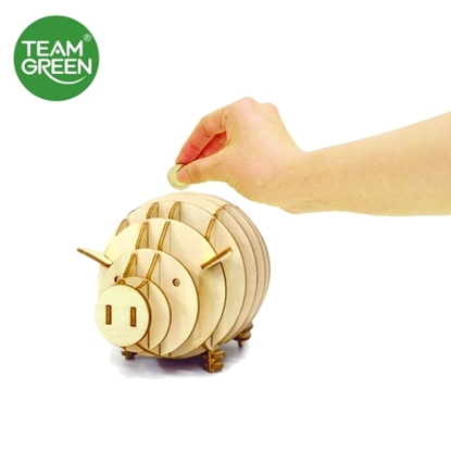 Picture of Piggy Coin Bank 3D Plywood Puzzle - Team Green® JIGZLE®
